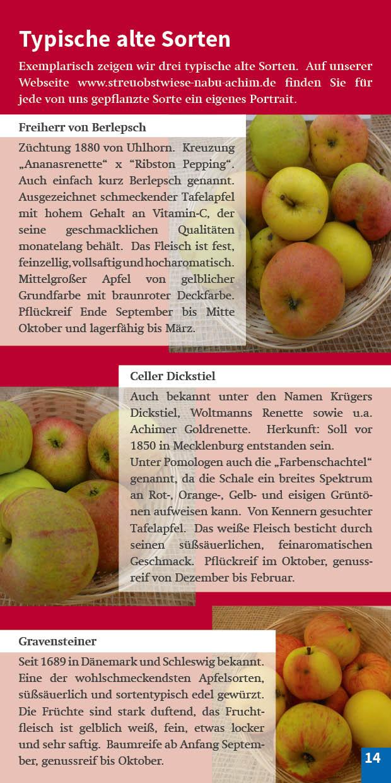 Broschüre Seite 14 Alte Sorten Streuobstwiese Achimer Marsch